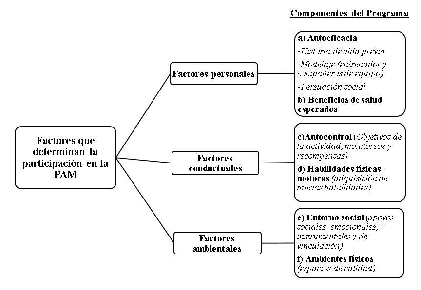 Modelo social para el desarrollo de un programa deportivo o de actividad física para la persona adulta mayor