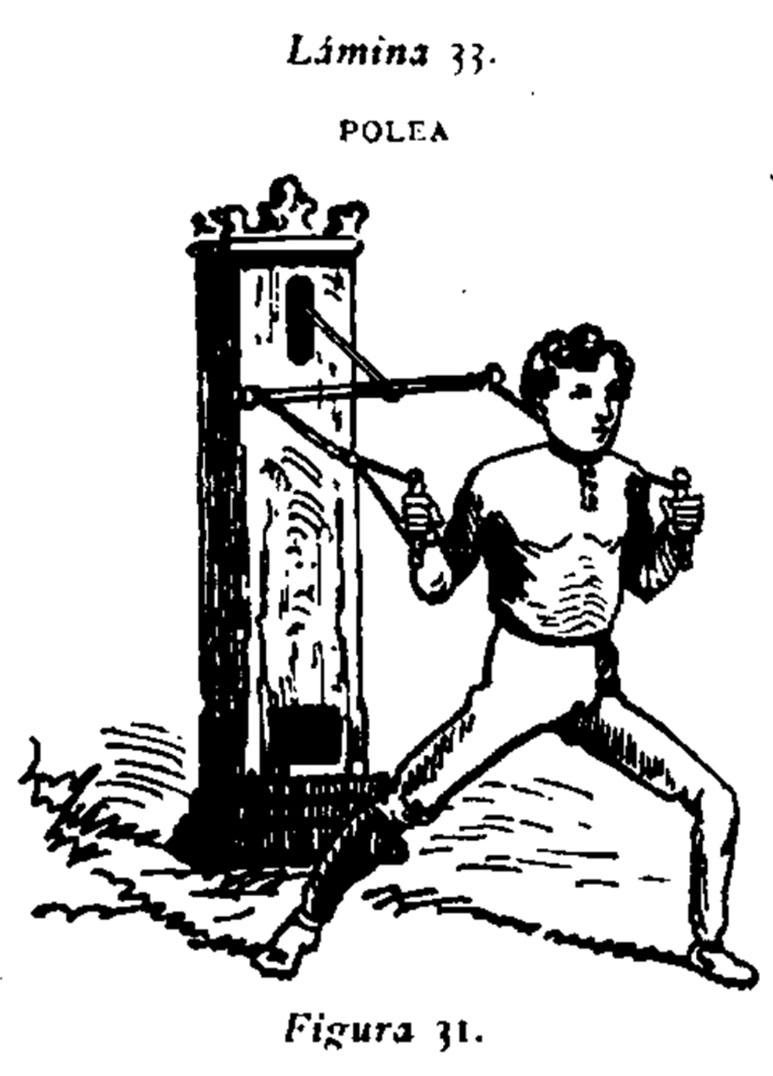 """""""Este aparato, perfeccionado en Madrid por el autor de este TRATADO en el año de 1875, estando el Gimnasio establecido en la calle de las Infantas, se ha extendido desde aquella época con prodigiosa rapidez por Gimnasios, Colegios y casas particulares, a pesar de las críticas de que era objeto por parte de algunos Profesores, que también han tenido que adoptarle en vista de sus resaltados."""""""