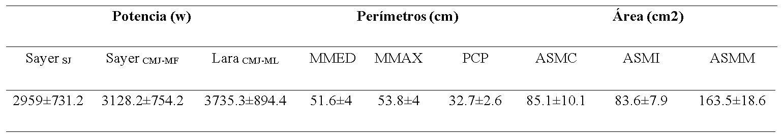 Antropometría de miembro inferior y rendimiento de la capacidad de salto